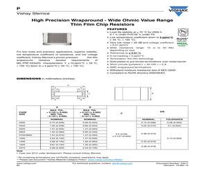 P0805K1010DGT.pdf