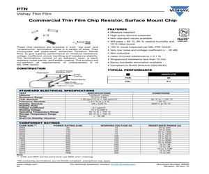 PTN0805K1010BBWS.pdf