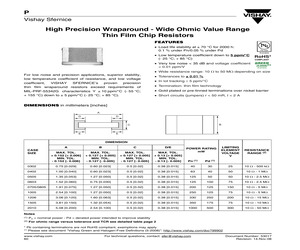 P1206K1010BGT.pdf